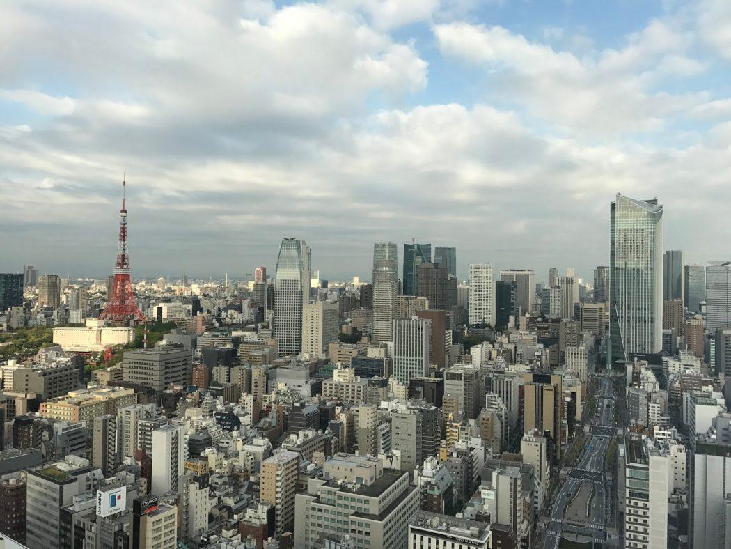 いなか日記。06-2『大都会、東京へ②。』