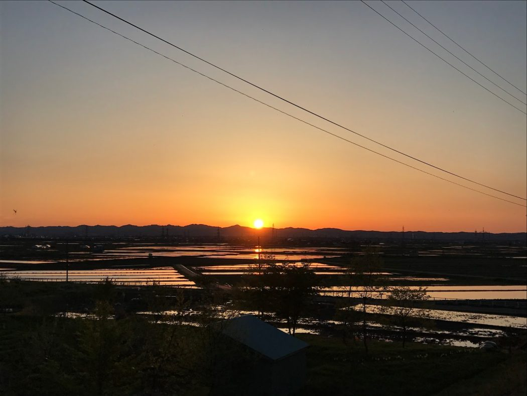 いなか日記。09『田に映る夕陽。』