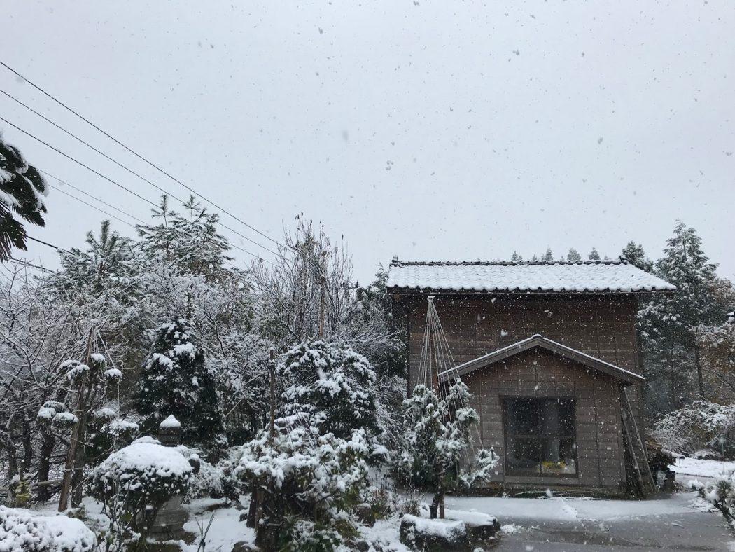 いなか日記。54『初雪と祝い酒。』
