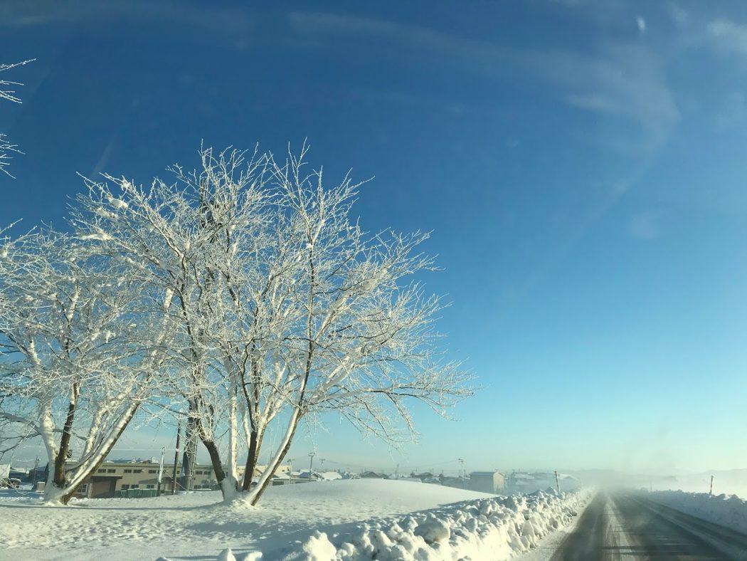 いなか日記。64『大雪の翌日の景色。』