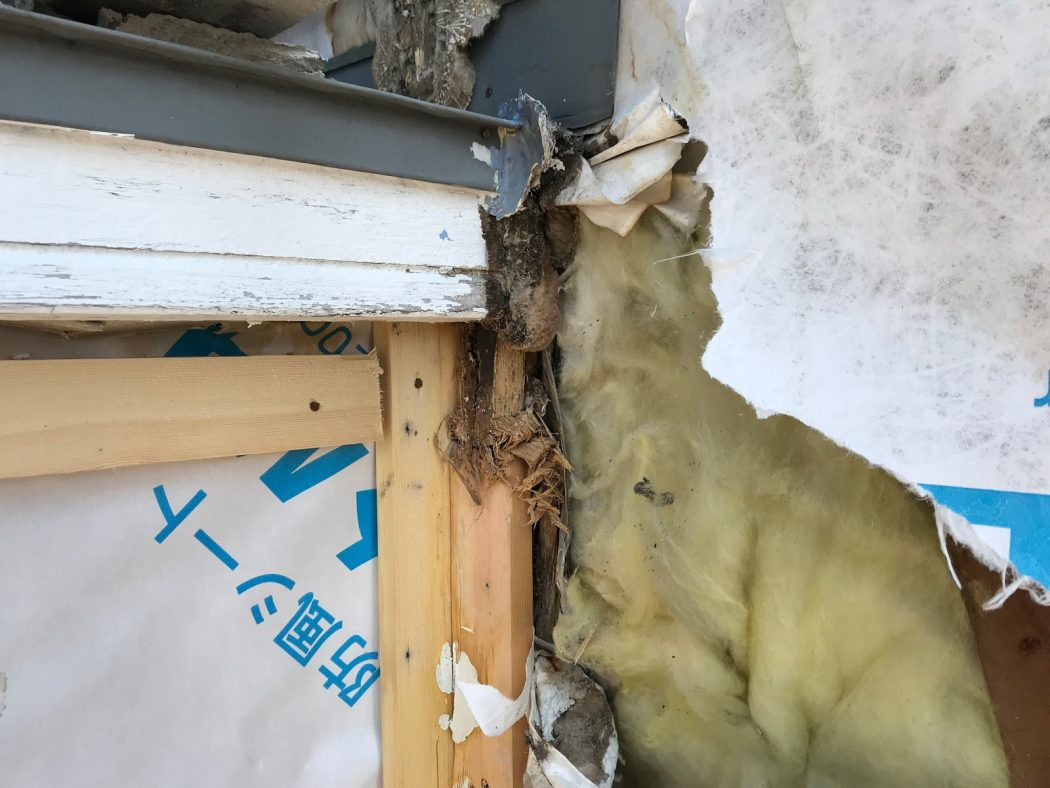 【秘訣】壁内にカビ発生。「中古住宅購入時の注意点」