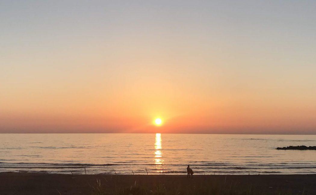 いなか日記。89『鏡張りの夕日とハマヒルガオ。』
