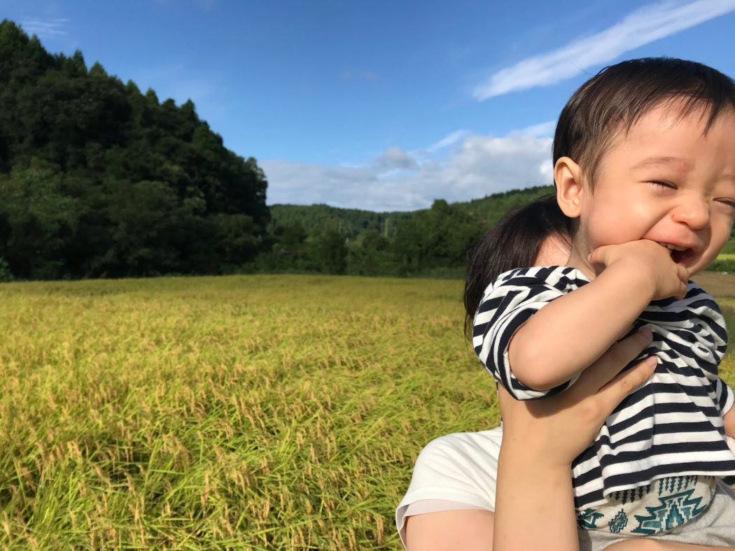 いなか日記。98『息子の初稲刈り&1歳誕生日会』