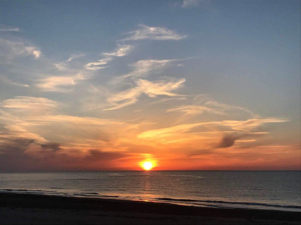 いなか日記。99『10月の夕日と花々。海に集まる人たち』