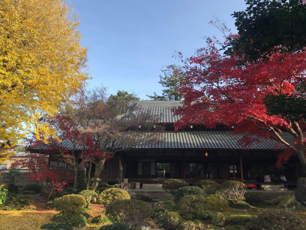 新潟観光大使。87『良寛と夕日の丘・椿寿荘・加茂山リス園。』息子と遊ぶ幸せ。