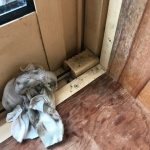 【健康】冬場、サッシのカビに注意。ポイントは高断熱と暖房。