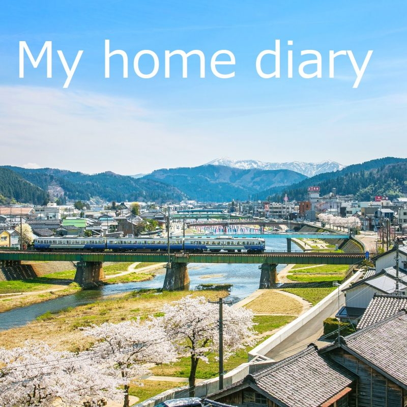 「My home diary」