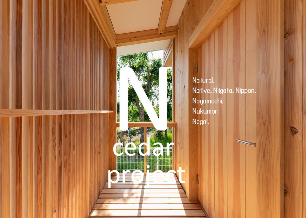 【新計画】『N cedar project』START!!!