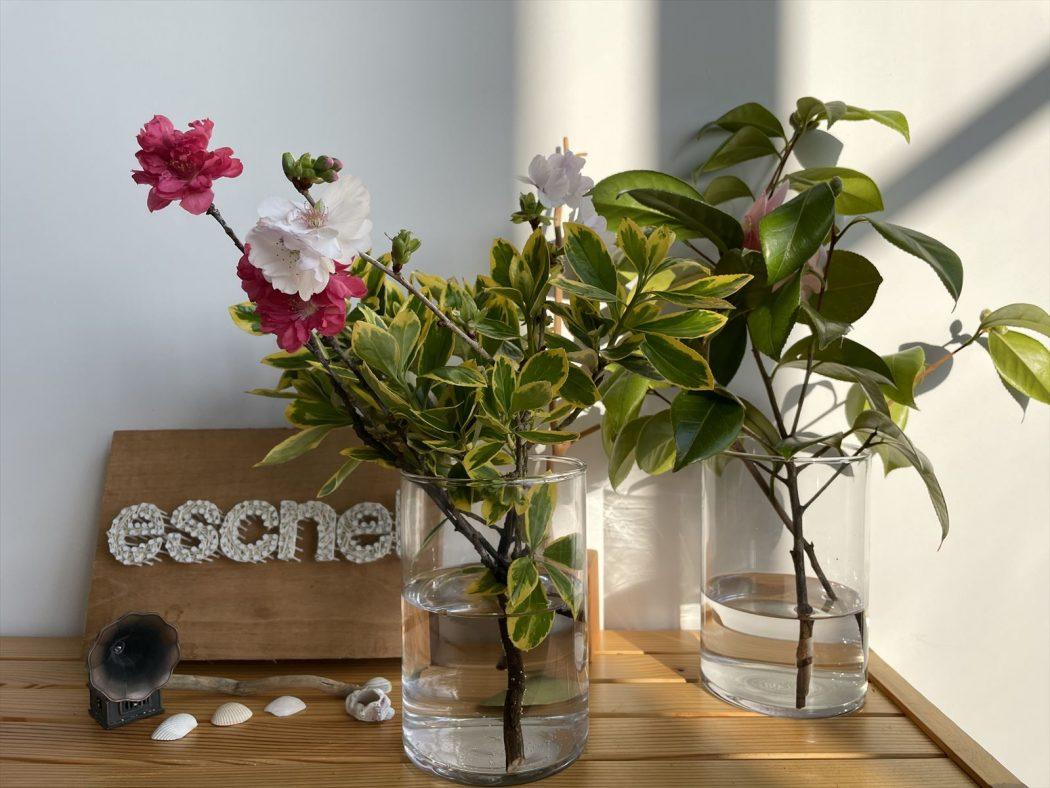 【想い】エスネルはアートでありたい。『設計した家を「作品」と呼ぶ覚悟。』