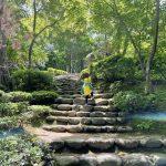 いなか日記。143『GW2021。新緑の松雲山荘。』愛しき日々と命の循環。