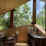 【秘訣】『グリーンウインドウのススメ』。癒しと日射遮蔽を叶える理想の窓辺。-イトウヤカフェさん-